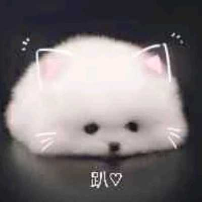 yiguozhou@mastodon.online