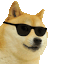 :cooldoggo: